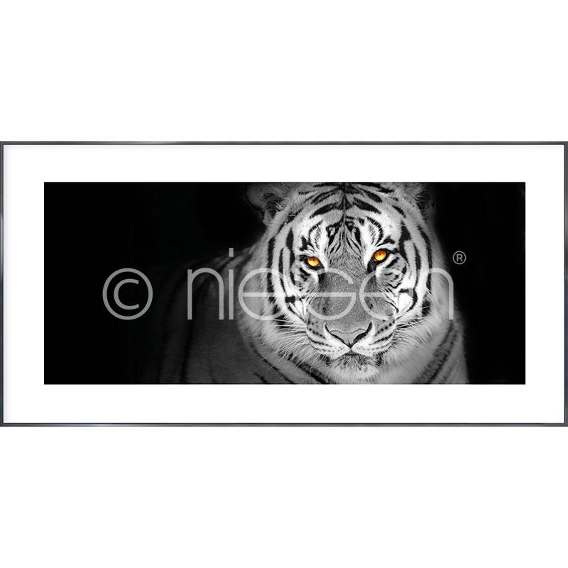 "Imagen con marco ""Tiger"" con marco de alumino Alpha"