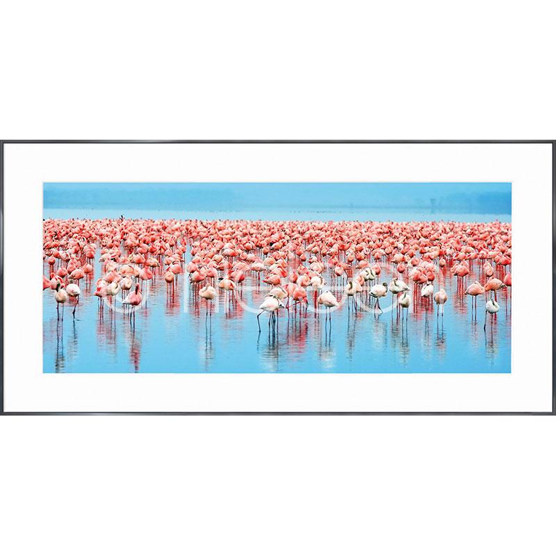 """Imagen con marco """"Flamingos"""" con marco de alumino Alpha"""