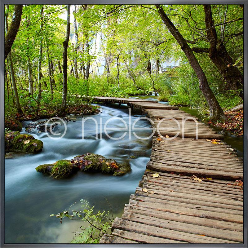 "Imagen con marco ""Footprint Forest"" con marco de alumino Alpha"