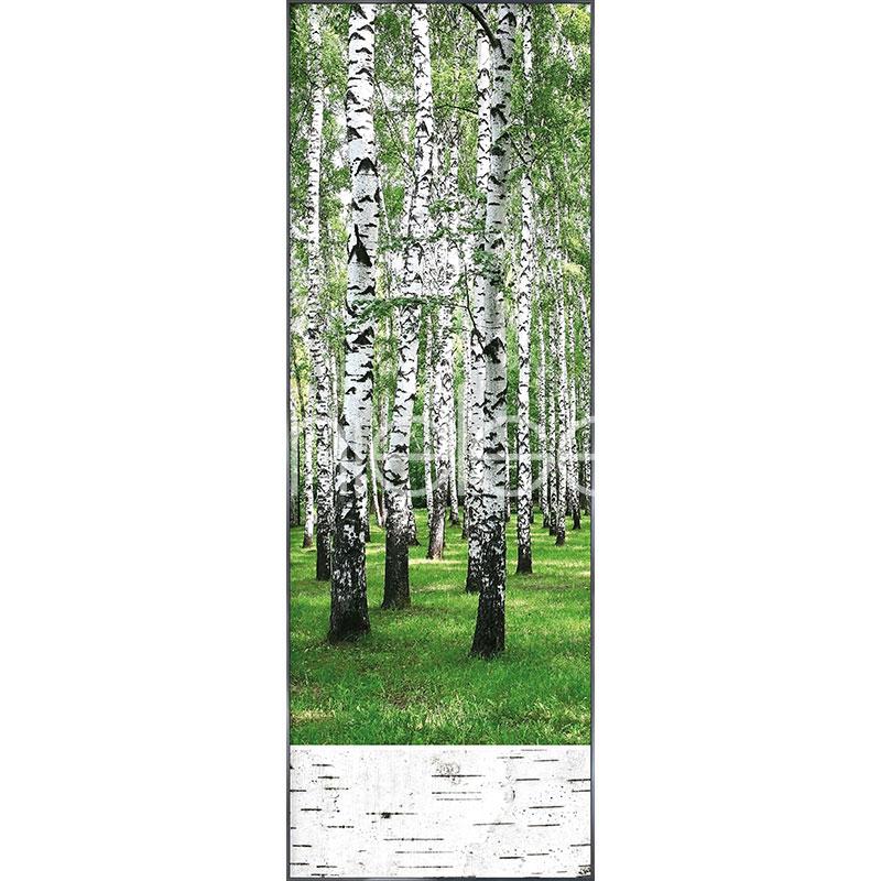 """Imagen con marco """"Birch Forest"""" con marco de alumino Alpha"""